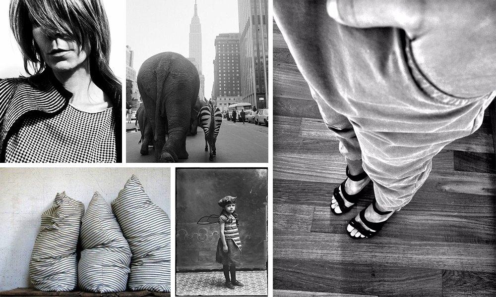 02 pantaloni elastico caviglia